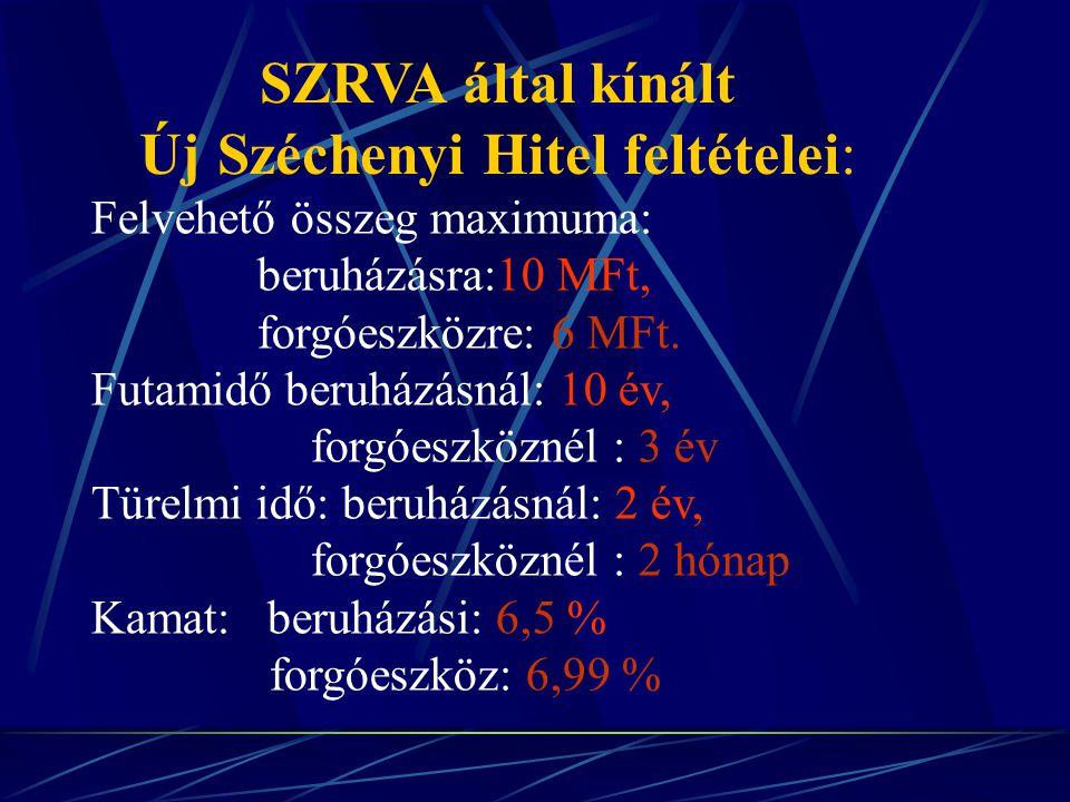 SZRVA által kínált Új Széchenyi Hitel feltételei: Felvehető összeg maximuma: beruházásra:10 MFt, forgóeszközre: 6 MFt.