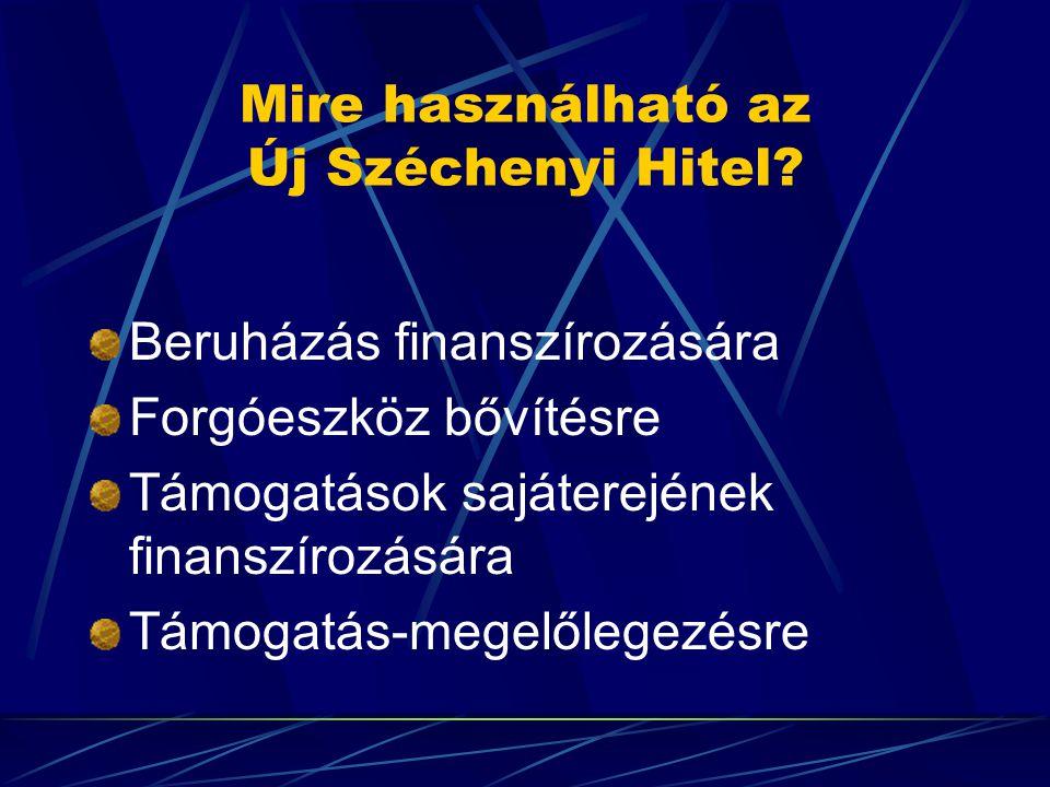 Mire használható az Új Széchenyi Hitel.