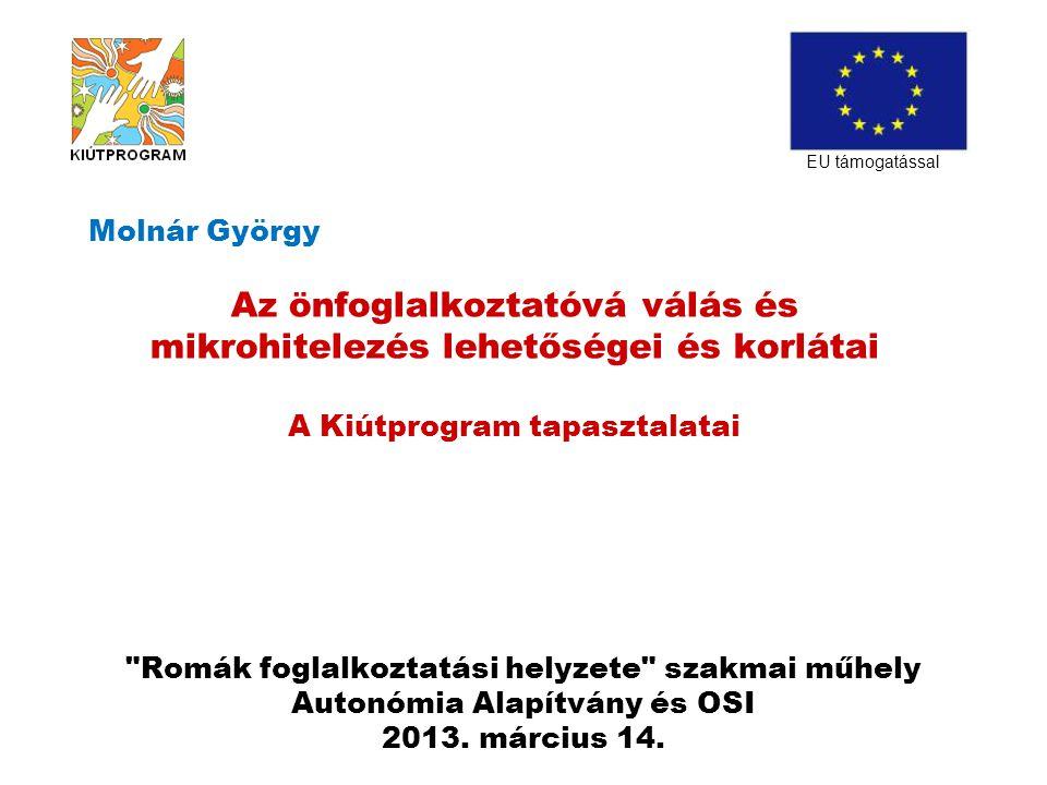 Romák foglalkoztatási helyzete szakmai műhely Autonómia Alapítvány és OSI 2013.