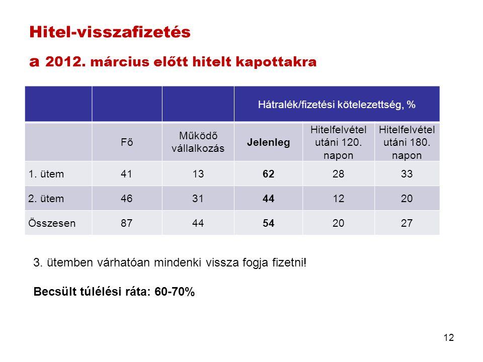 Hitel-visszafizetés a 2012. március előtt hitelt kapottakra Hátralék/fizetési kötelezettség, % Fő Működő vállalkozás Jelenleg Hitelfelvétel utáni 120.