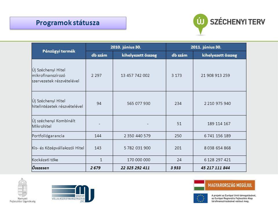 Pénzügyi termék 2010. június 30.2011. június 30. db számkihelyezett összegdb számkihelyezett összeg Új Széchenyi Hitel mikrofinanszírozó szervezetek r