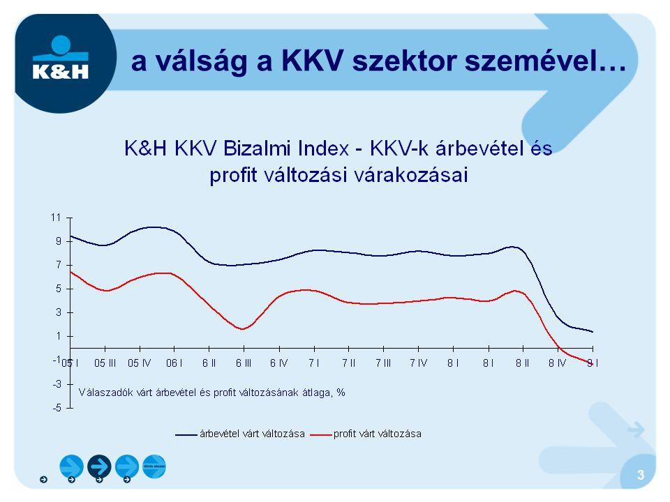 14 közös kiútkeresés közös érdekeltség a folyamat megállításában: az államnak hosszú távon sikeres cégekre (adóbevételekre) a lakosságnak munkahelyekre a KKV szektornak hitelre az országnak értékteremtésre, a kapacitások kihasználására a bankoknak pedig üzletre van szüksége érdekközösség: EU-IMF-Magyarország a globális és az európai recesszió megállítása IMF és EU hitel, deficit-elvárás enyhítése az elmúlt 2 évben EU-s forrásokból indult 1800 mrd Ft-os állami és önkormányzati beruházási projekt egy része ma már a megvalósítás fázisában van (útépítés, város-rehabilitáció, oktatás, egészségügy stb.)