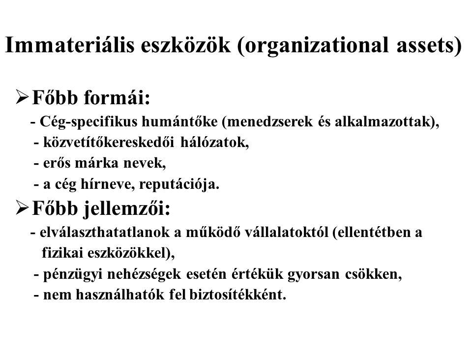 Immateriális eszközök (organizational assets)  Főbb formái: - Cég-specifikus humántőke (menedzserek és alkalmazottak), - közvetítőkereskedői hálózato