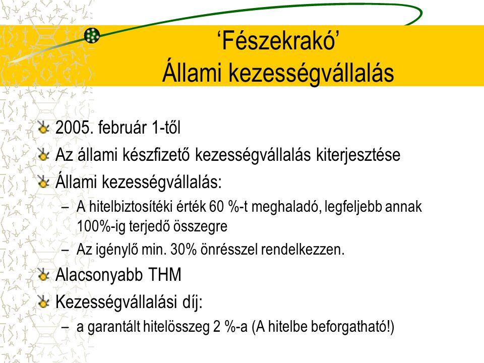 'Fészekrakó' Állami kezességvállalás 2005. február 1-től Az állami készfizető kezességvállalás kiterjesztése Állami kezességvállalás: –A hitelbiztosít