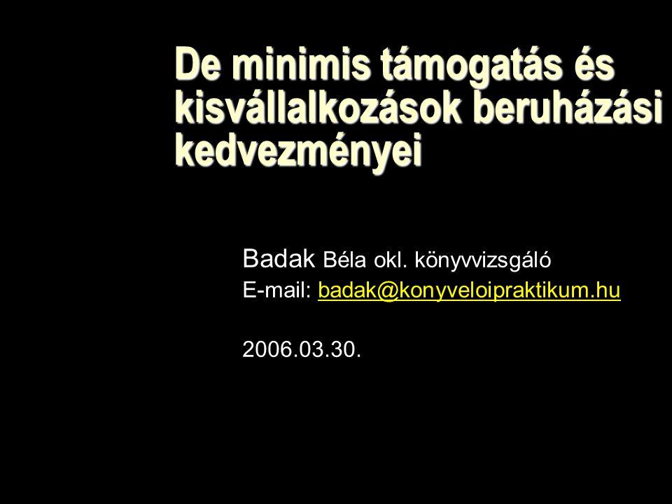 De minimis támogatás és kisvállalkozások beruházási kedvezményei Badak Béla okl.
