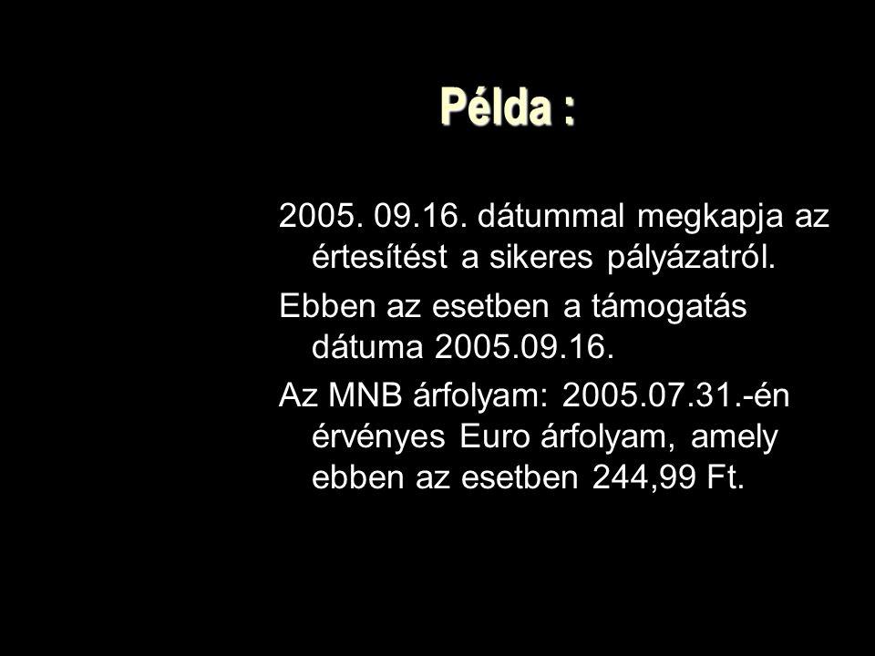 Példa : 2005.09.16. dátummal megkapja az értesítést a sikeres pályázatról.