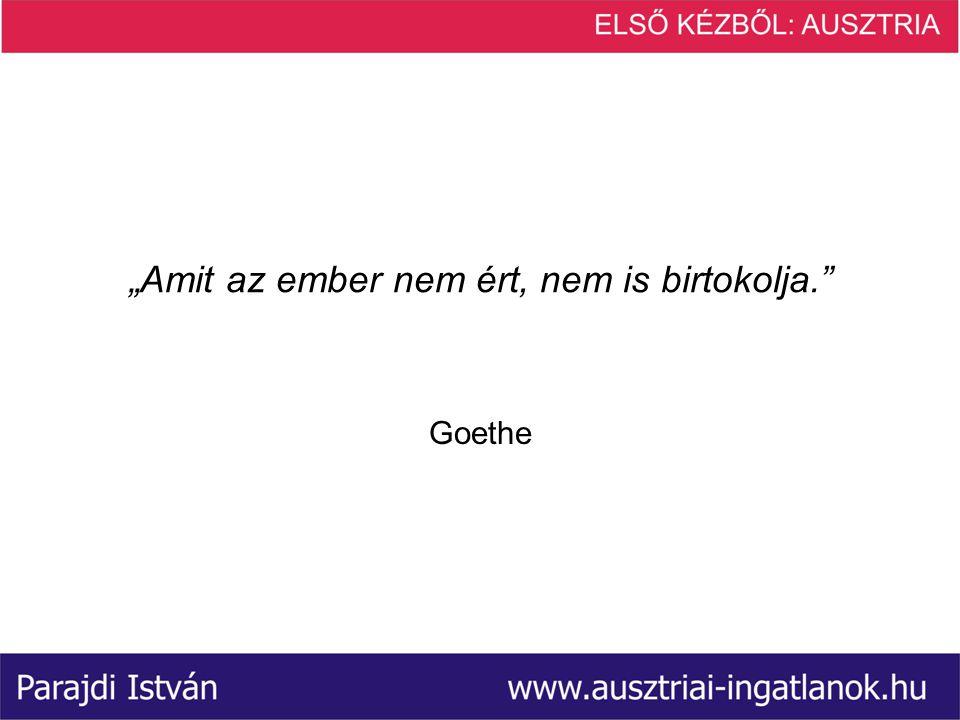 """""""Amit az ember nem ért, nem is birtokolja. Goethe"""
