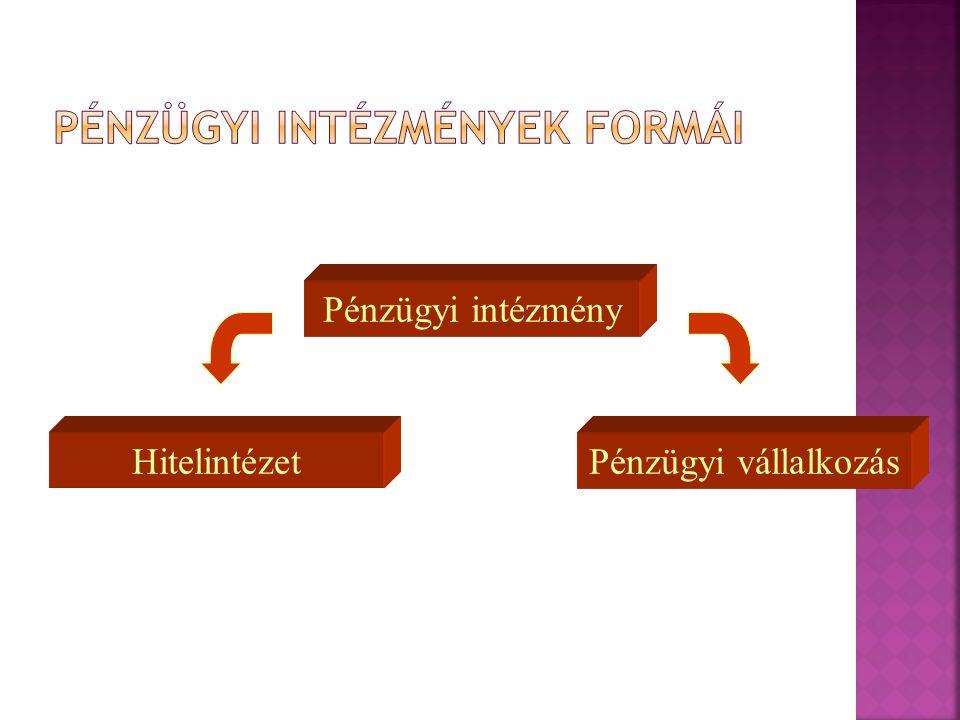 Pénzügyi intézmény Pénzügyi vállalkozásHitelintézet