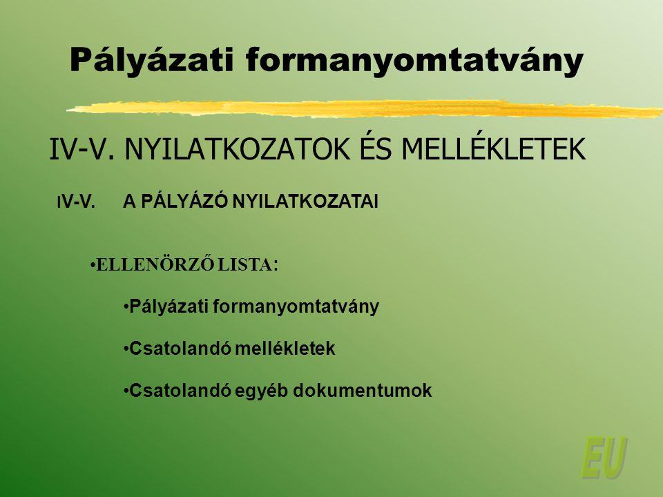 Pályázati formanyomtatvány IV-V.