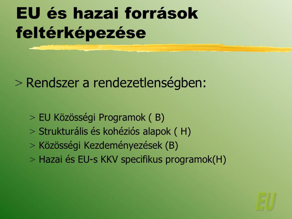 EU és hazai források feltérképezése > Rendszer a rendezetlenségben: > EU Közösségi Programok ( B) > Strukturális és kohéziós alapok ( H) > Közösségi Kezdeményezések (B) > Hazai és EU-s KKV specifikus programok(H)