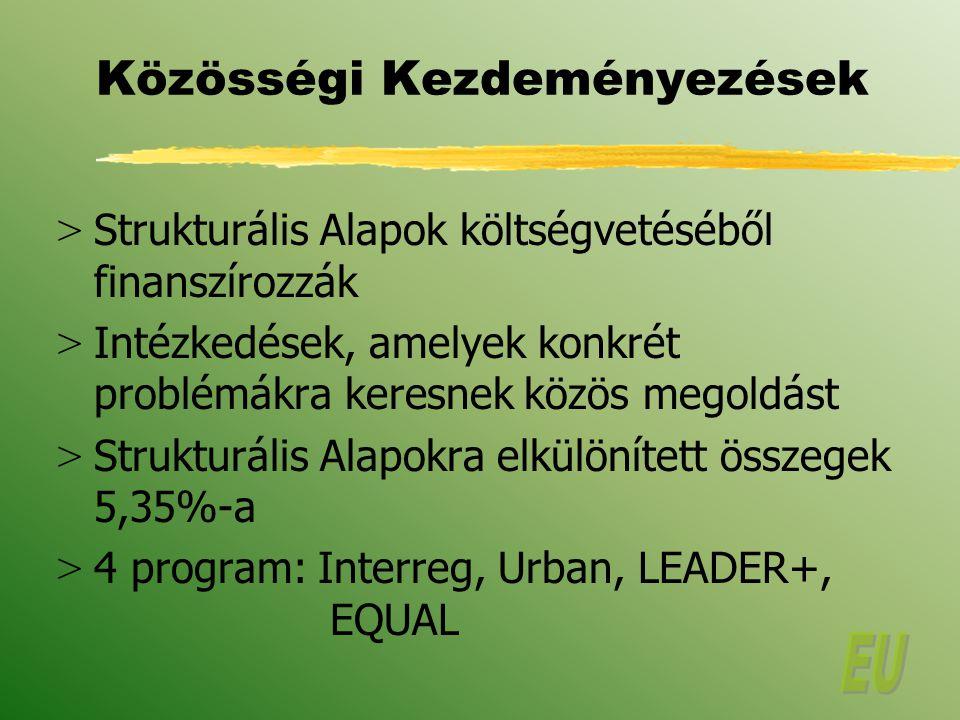 Közösségi Kezdeményezések > Strukturális Alapok költségvetéséből finanszírozzák > Intézkedések, amelyek konkrét problémákra keresnek közös megoldást > Strukturális Alapokra elkülönített összegek 5,35%-a > 4 program: Interreg, Urban, LEADER+, EQUAL