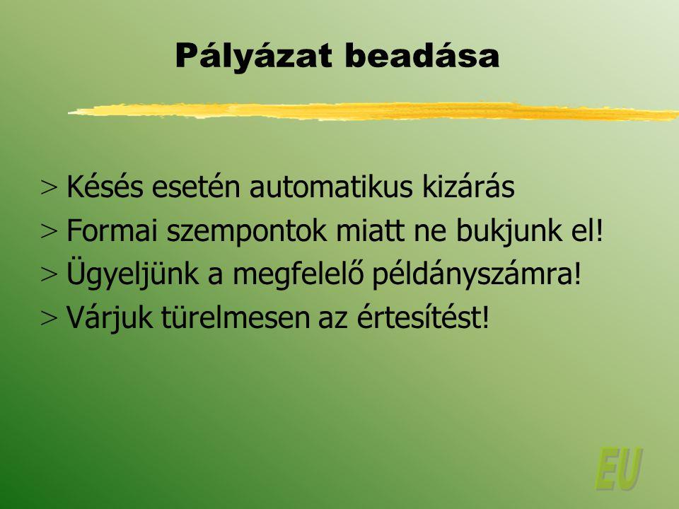 Pályázat beadása > Késés esetén automatikus kizárás > Formai szempontok miatt ne bukjunk el.