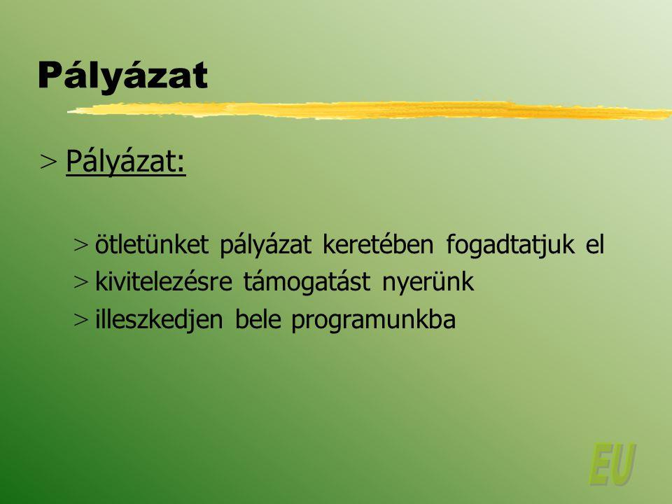 Pályázati formanyomtatvány I.A PROJEKT 1.
