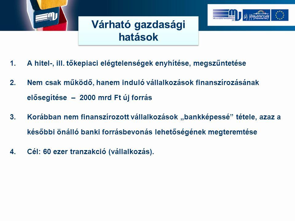 1.A hitel-, ill. tőkepiaci elégtelenségek enyhítése, megszűntetése 2.Nem csak működő, hanem induló vállalkozások finanszírozásának elősegítése – 2000