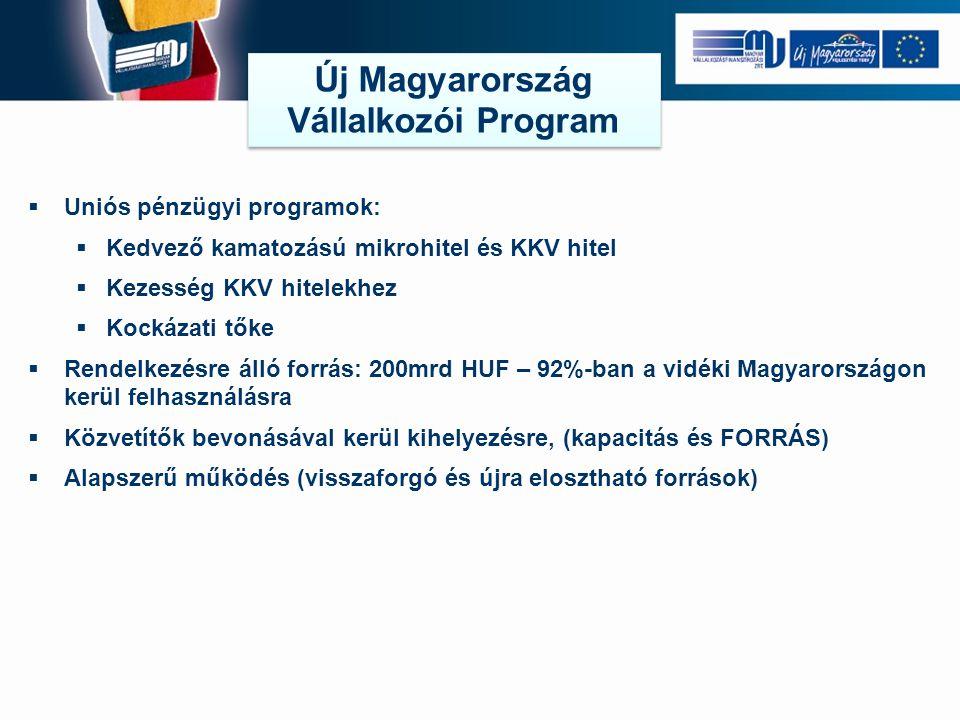  Uniós pénzügyi programok:  Kedvező kamatozású mikrohitel és KKV hitel  Kezesség KKV hitelekhez  Kockázati tőke  Rendelkezésre álló forrás: 200mr