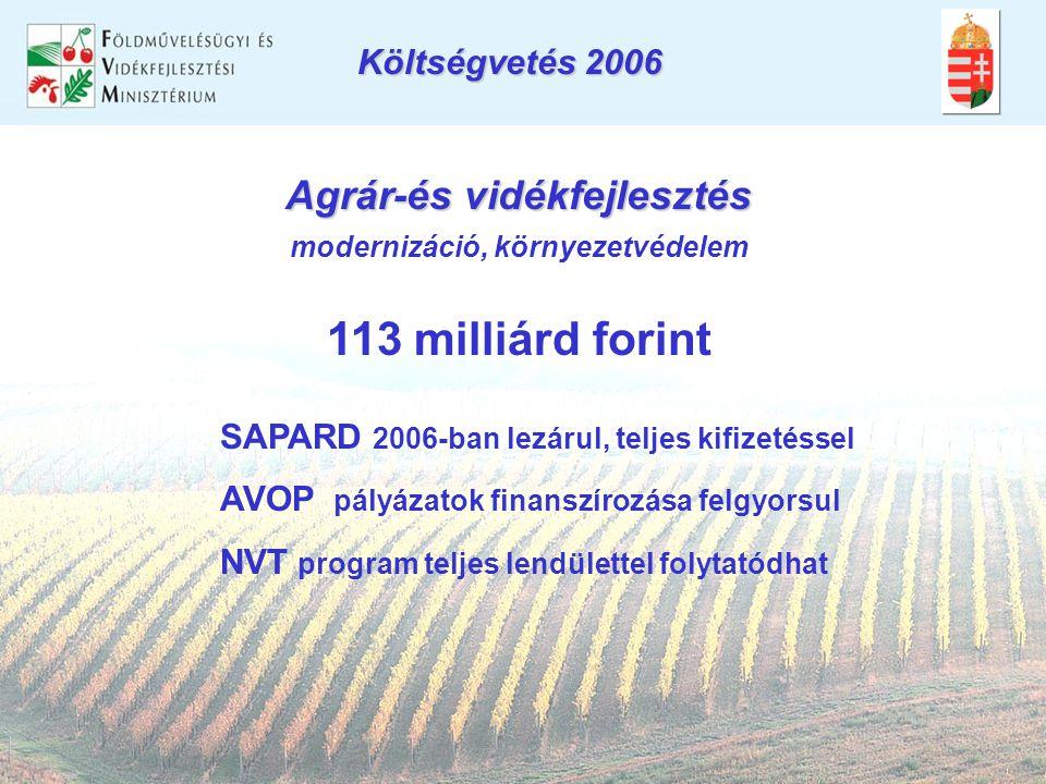 Agrár-és vidékfejlesztés modernizáció, környezetvédelem 113 milliárd forint SAPARD 2006-ban lezárul, teljes kifizetéssel AVOP pályázatok finanszírozása felgyorsul NVT program teljes lendülettel folytatódhat Költségvetés 2006