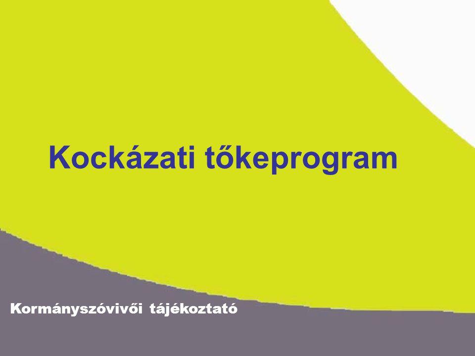 Kormányszóvivői tájékoztató Kockázati tőkeprogram