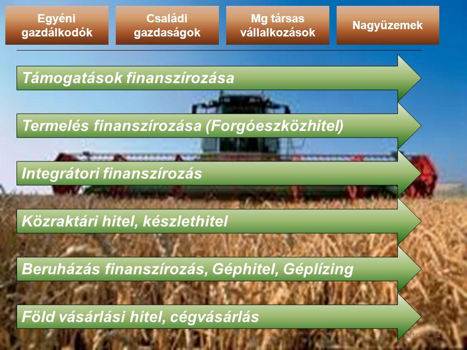 2014. 07. 04. 5 Egyéni gazdálkodók Családi gazdaságok Nagyüzemek Mg társas vállalkozások Támogatások finanszírozása Termelés finanszírozása (Forgóeszk