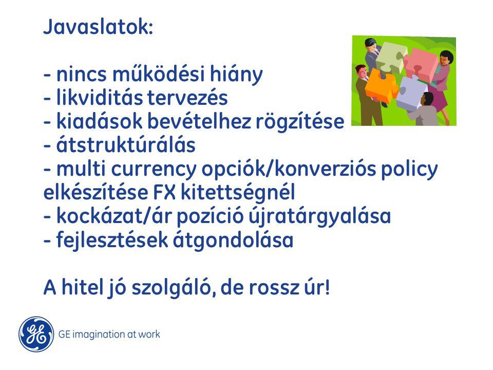 Javaslatok: - nincs működési hiány - likviditás tervezés - kiadások bevételhez rögzítése - átstruktúrálás - multi currency opciók/konverziós policy el