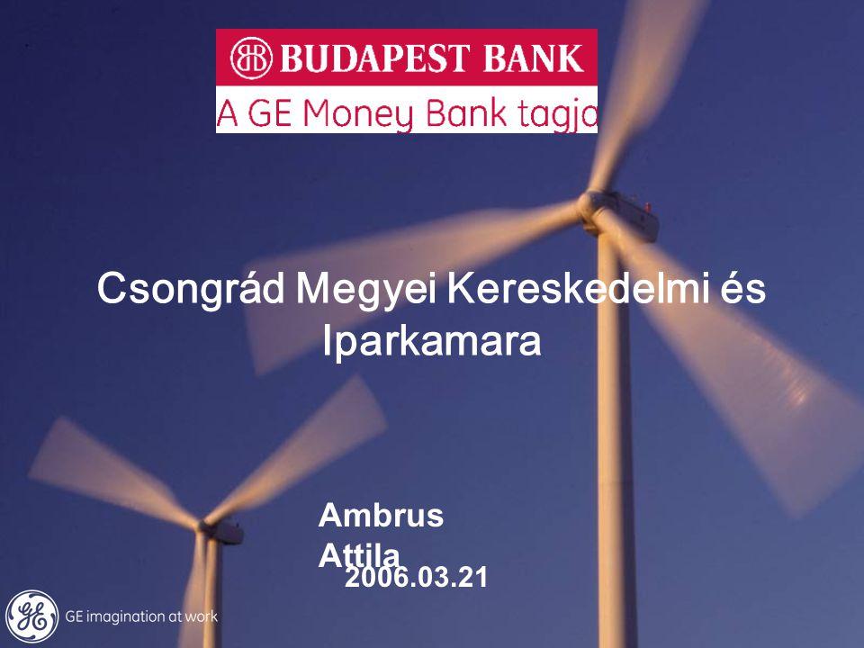 Csongrád Megyei Kereskedelmi és Iparkamara 2006.03.21 Ambrus Attila