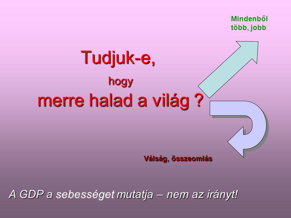 Jövőkereső, 2009 NFFT 2008 – 2011 Tartalom A jelenleg nem fenntartható folyamatok és a fenntarthatóság nézőpontja A világ amelyben élünk A magyar társ