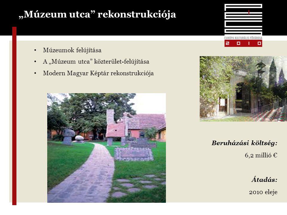 """14 """"Múzeum utca rekonstrukciója • Múzeumok felújítása • A """"Múzeum utca közterület-felújítása • Modern Magyar Képtár rekonstrukciója Beruházási költség: 6,2 millió € Átadás: 2010 eleje"""
