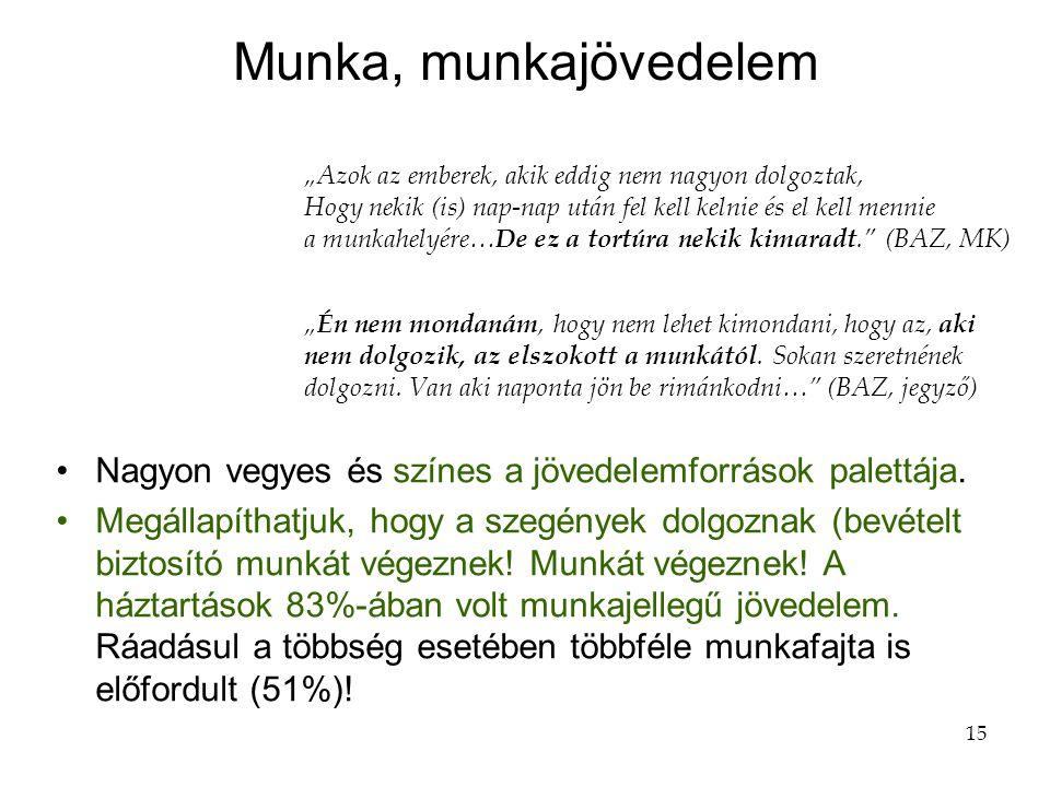 15 Munka, munkajövedelem •Nagyon vegyes és színes a jövedelemforrások palettája.