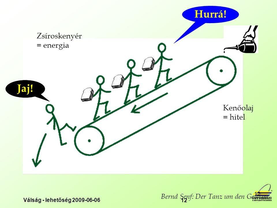 Válság - lehetőség 2009-06-06 12 Kenőolaj = hitel Zsíroskenyér = energia Bernd Senf: Der Tanz um den Gewinn Hurrá.