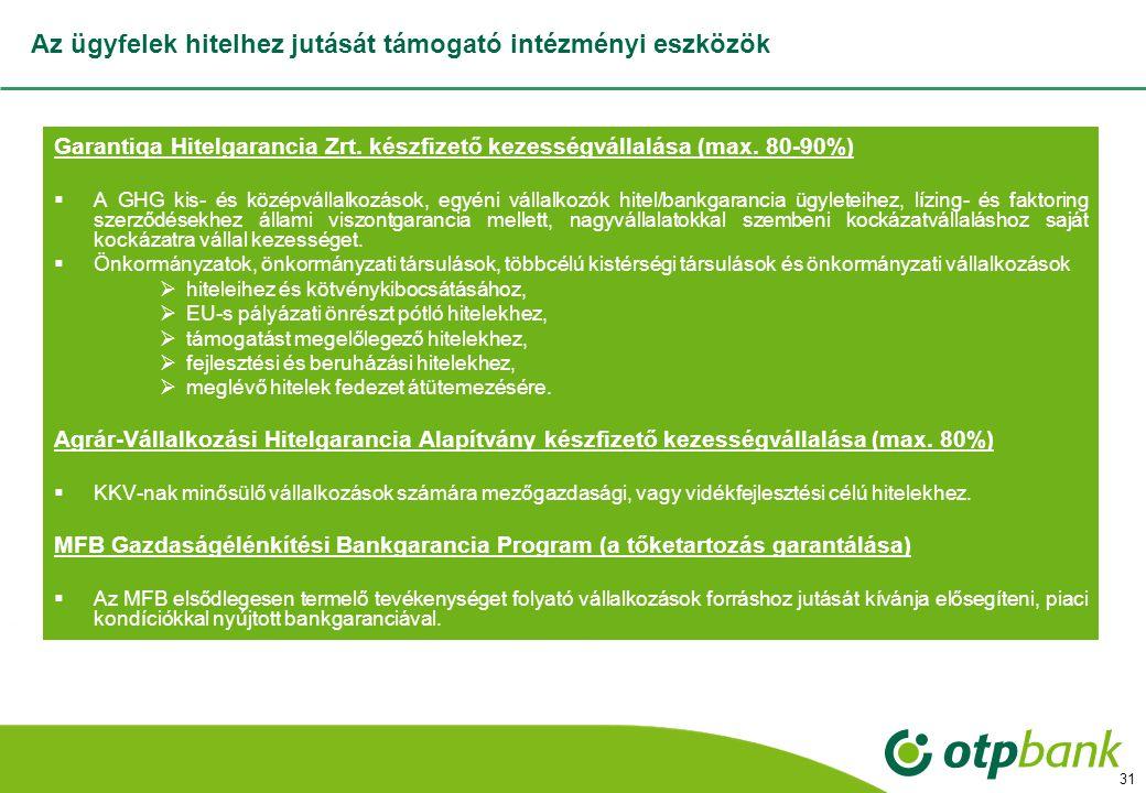 31 Az ügyfelek hitelhez jutását támogató intézményi eszközök Garantiqa Hitelgarancia Zrt.
