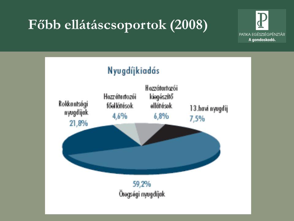 Főbb ellátáscsoportok (2008)