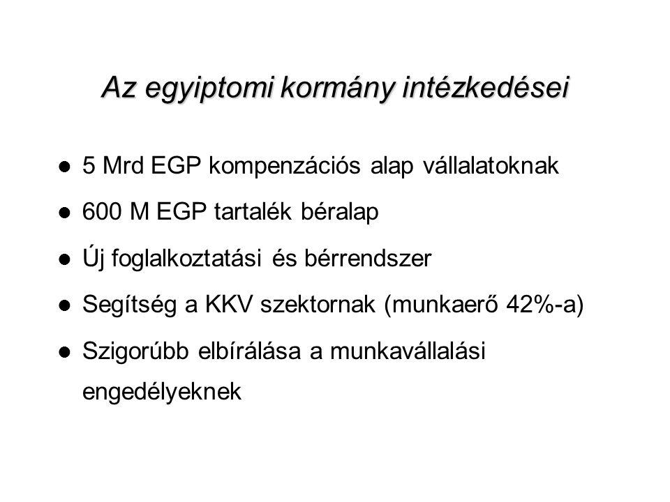 10 Az egyiptomi kormány intézkedései  5 Mrd EGP kompenzációs alap vállalatoknak  600 M EGP tartalék béralap  Új foglalkoztatási és bérrendszer  Segítség a KKV szektornak (munkaerő 42%-a)  Szigorúbb elbírálása a munkavállalási engedélyeknek