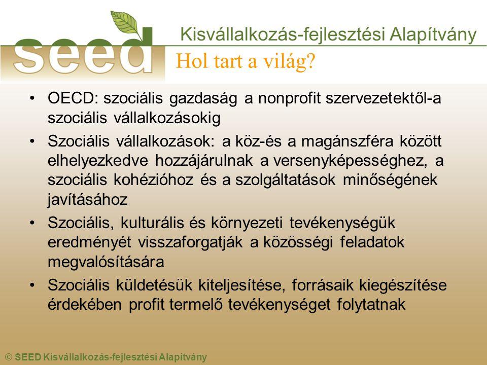 © SEED Kisvállalkozás-fejlesztési Alapítvány Hol tart a világ? •OECD: szociális gazdaság a nonprofit szervezetektől-a szociális vállalkozásokig •Szoci