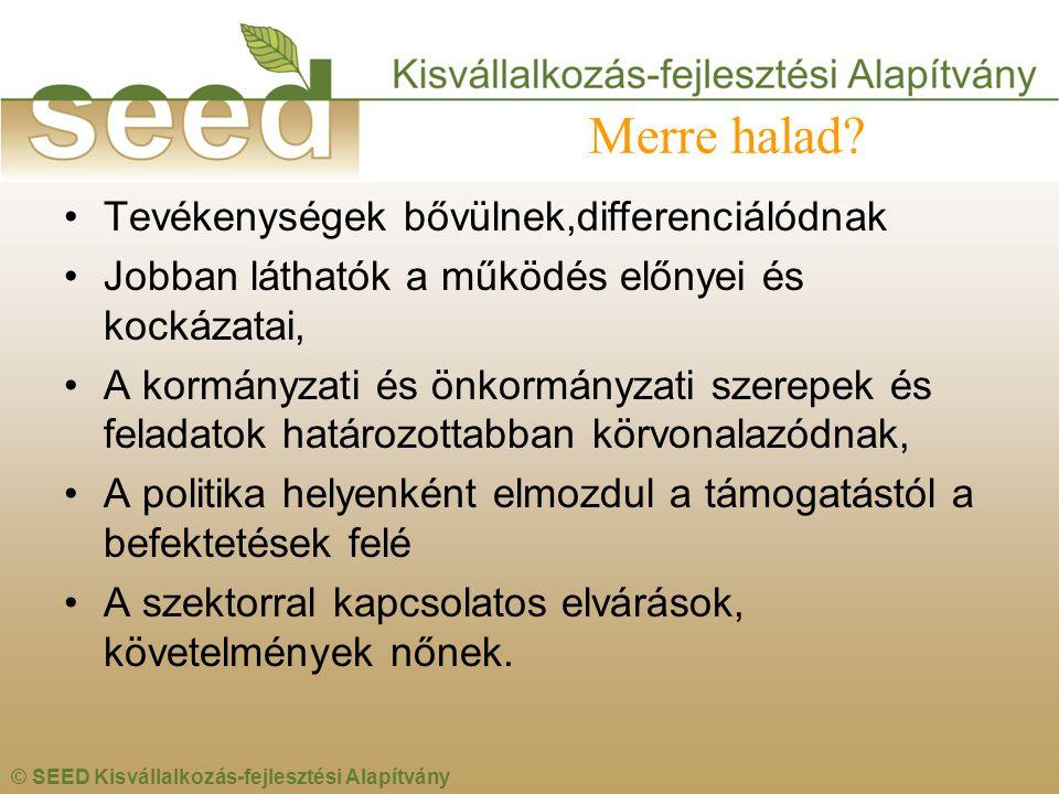 © SEED Kisvállalkozás-fejlesztési Alapítvány Merre halad? •Tevékenységek bővülnek,differenciálódnak •Jobban láthatók a működés előnyei és kockázatai,