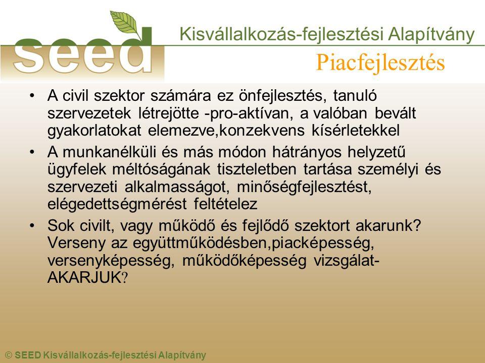 © SEED Kisvállalkozás-fejlesztési Alapítvány Piacfejlesztés •A civil szektor számára ez önfejlesztés, tanuló szervezetek létrejötte -pro-aktívan, a va