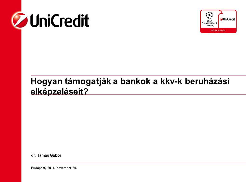 Hogyan támogatják a bankok a kkv-k beruházási elképzeléseit? Budapest, 2011. november 30. dr. Tamás Gábor