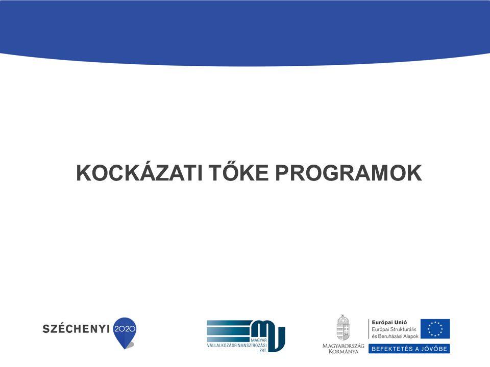 2009-ES KOCKÁZATI TŐKEPROGRAMOK - KÖZÖS ALAP ÉS CO-INVESTMENT ALPROGRAM (KOCKÁZATI TŐKE I.) Program meghirdetése:2009.