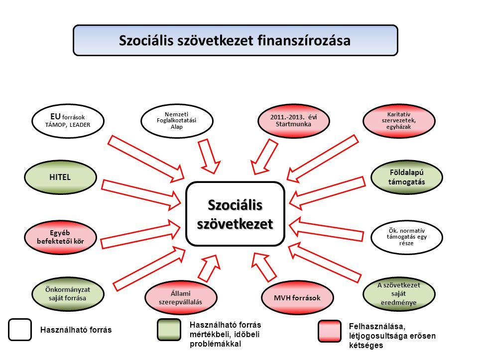 Szociális szövetkezet EU források TÁMOP, LEADER Állami szerepvállalás Nemzeti Foglalkoztatási Alap 2011.-2013.