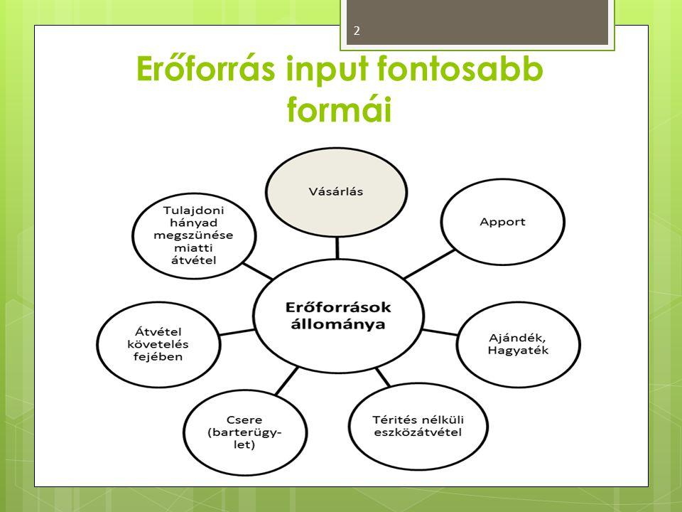 Erőforrás input fontosabb formái 2