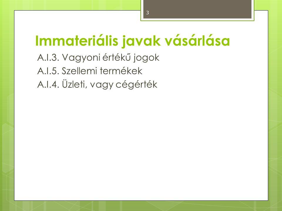 Immateriális javak vásárlása A.I.3. Vagyoni értékű jogok A.I.5. Szellemi termékek A.I.4. Üzleti, vagy cégérték 3