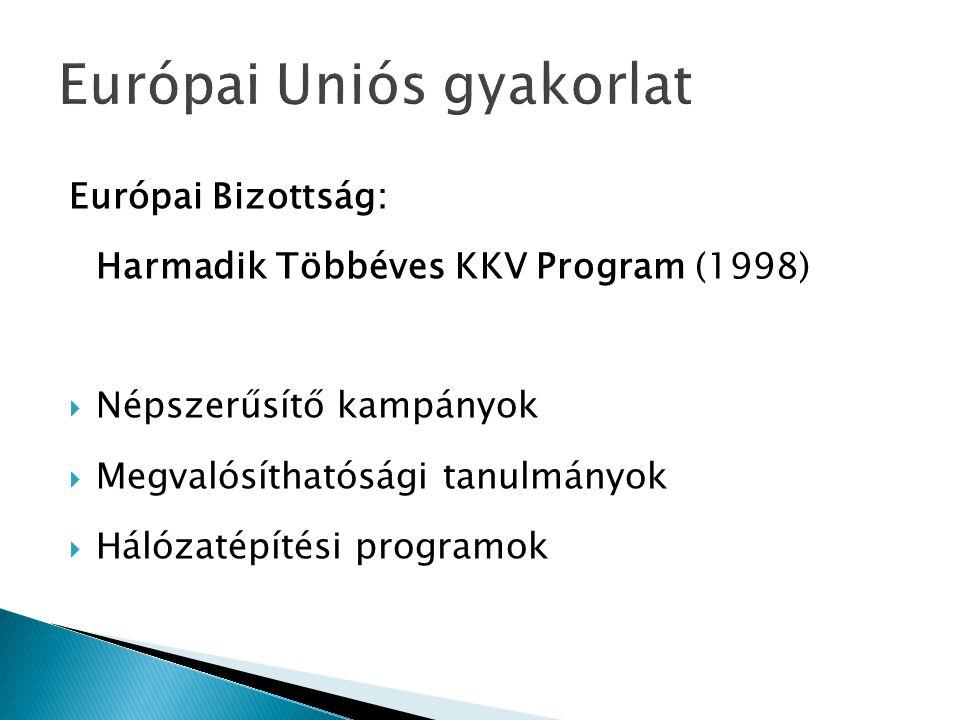 Európai Uniós gyakorlat Európai Bizottság: Harmadik Többéves KKV Program (1998)  Népszerűsítő kampányok  Megvalósíthatósági tanulmányok  Hálózatépí