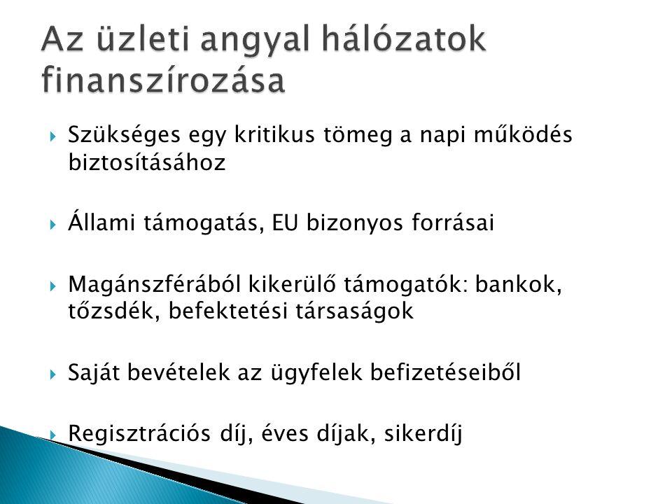 Javaslat Magyarországra vonatkozóan  Nonprofit szervezet  Eleinte állami, EU-s, önkormányzati pénzekből finanszírozva  Ügyfélkör bővülésével önfenntartóvá válhat  Feladata: népszerűsítés, közvetítő és kiegészítő szolgáltatások  Budapesti központ + 5 regionális iroda  Már működő gazdaságfejlesztési intézményhálózat infrastruktúrájára csatlakozzon