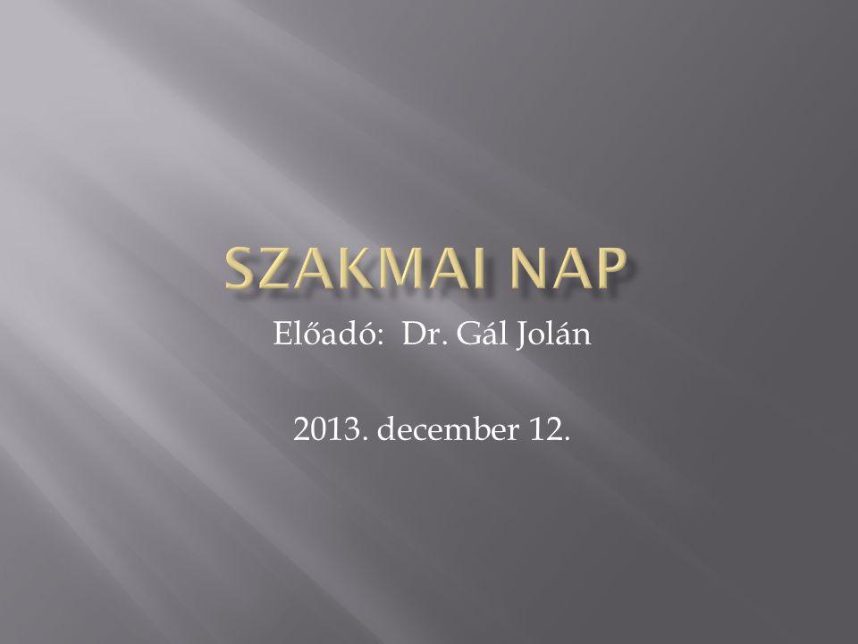 Előadó: Dr. Gál Jolán 2013. december 12.