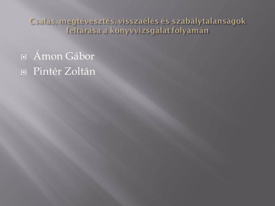  Ámon Gábor  Pintér Zoltán