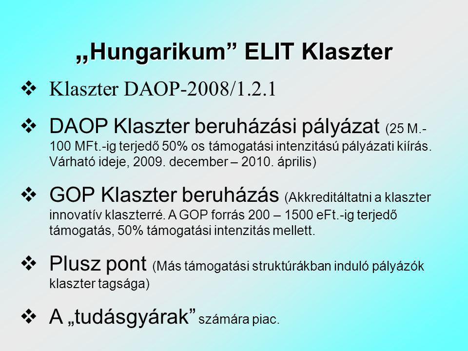 """"""" Hungarikum ELIT Klaszter  Klaszter DAOP-2008/1.2.1  DAOP Klaszter beruházási pályázat (25 M.- 100 MFt.-ig terjedő 50% os támogatási intenzitású pályázati kiírás."""