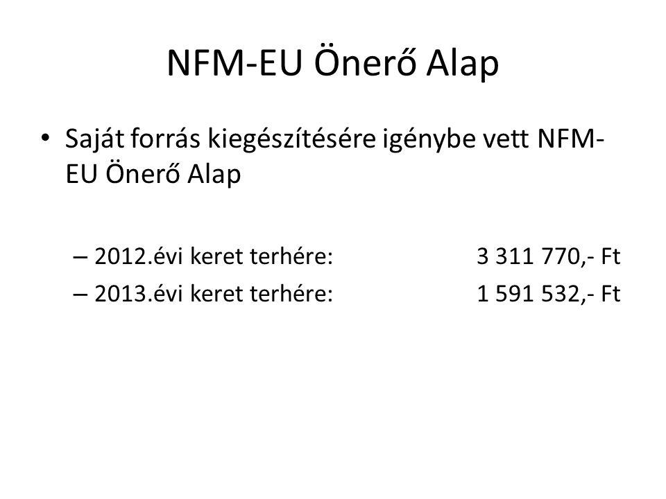 NFM-EU Önerő Alap • Saját forrás kiegészítésére igénybe vett NFM- EU Önerő Alap – 2012.évi keret terhére: 3 311 770,- Ft – 2013.évi keret terhére: 1 5