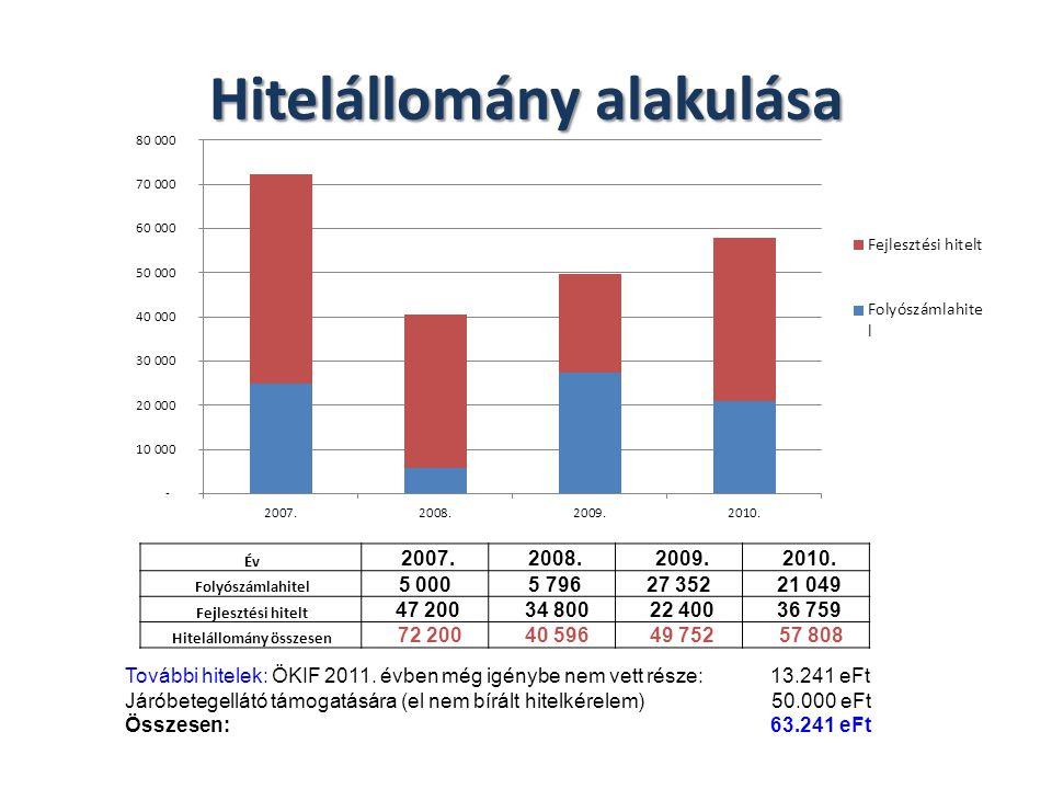 Hitelállomány alakulása Év 2007. 2008. 2009. 2010.