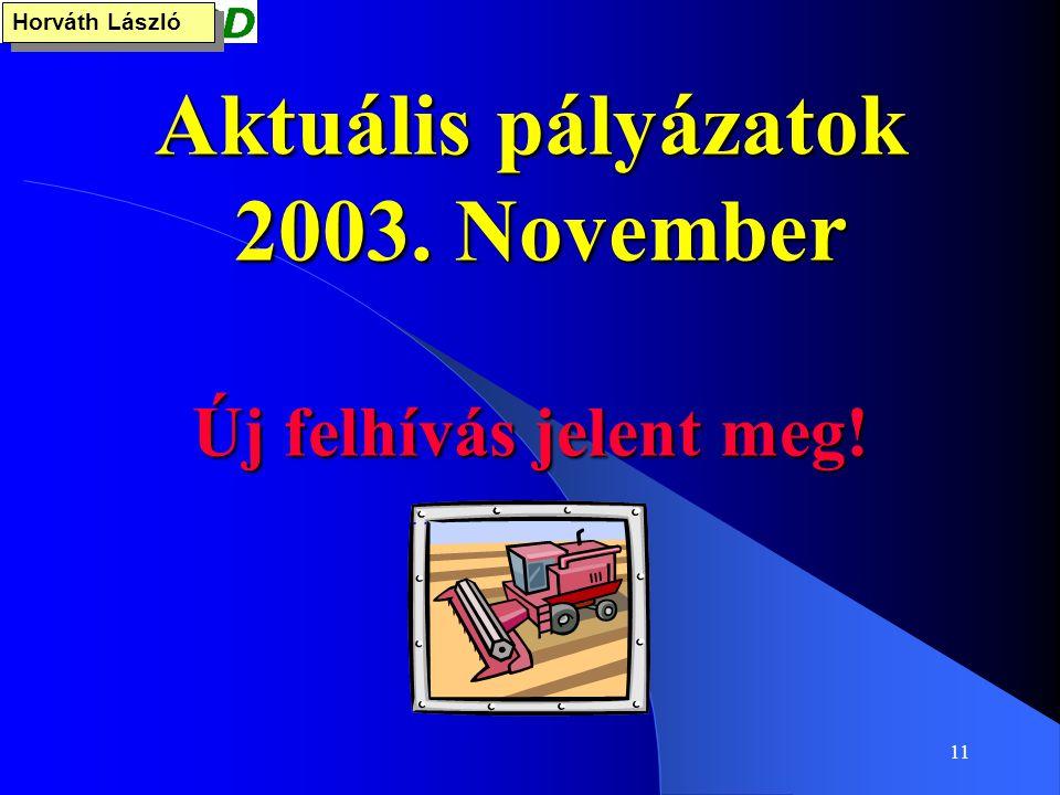 11 Aktuális pályázatok 2003. November Új felhívás jelent meg! Horváth László
