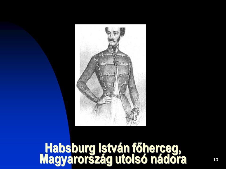 10 Habsburg István főherceg, Magyarország utolsó nádora