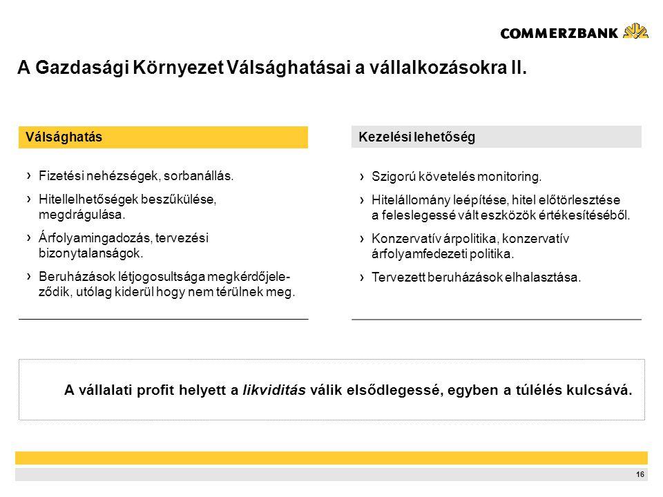 16 A Gazdasági Környezet Válsághatásai a vállalkozásokra II.