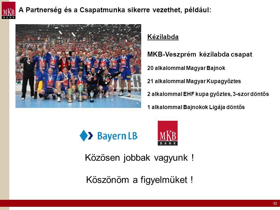 12 A Partnerség és a Csapatmunka sikerre vezethet, például: Közösen jobbak vagyunk ! Köszönöm a figyelmüket ! Kézilabda MKB-Veszprém kézilabda csapat